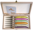 LAGUIOLE HARMONY Steak knives - plexi colored handle  Wooden chest of 6 knives mixed colors handles